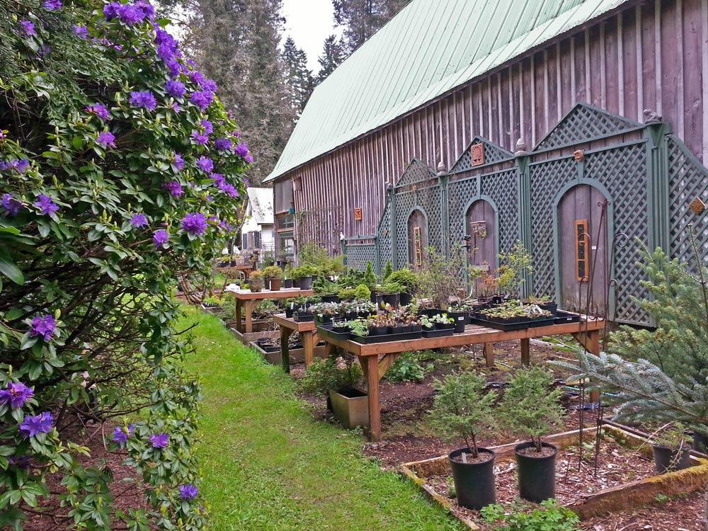 plant nursery by a barn
