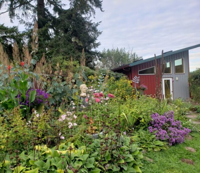 Bassetti's Gardens, perennials